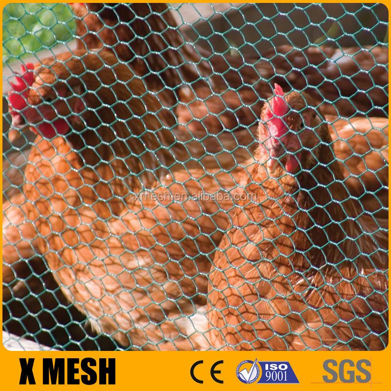 Chicken coop wire fence/Hot sale hexagonal wire mesh/1/2 inch chicken wire with CE Certificate