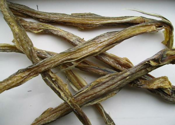 Bombay Duck | Bombay Duck Dried Fishes Buy Dried Fish Products Product On