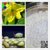 Manufacturer directly supplied Insecticide acetamiprid 20 sp CAS 160430-64-8