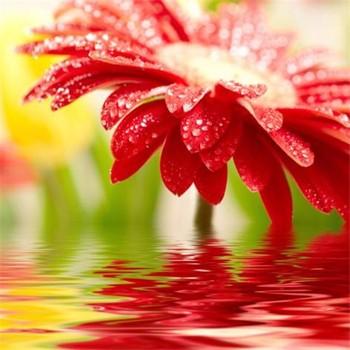 Güzel çiçek Vazoda Modern Boyamabüyük çiçek Vazo Boyama Buy çiçek