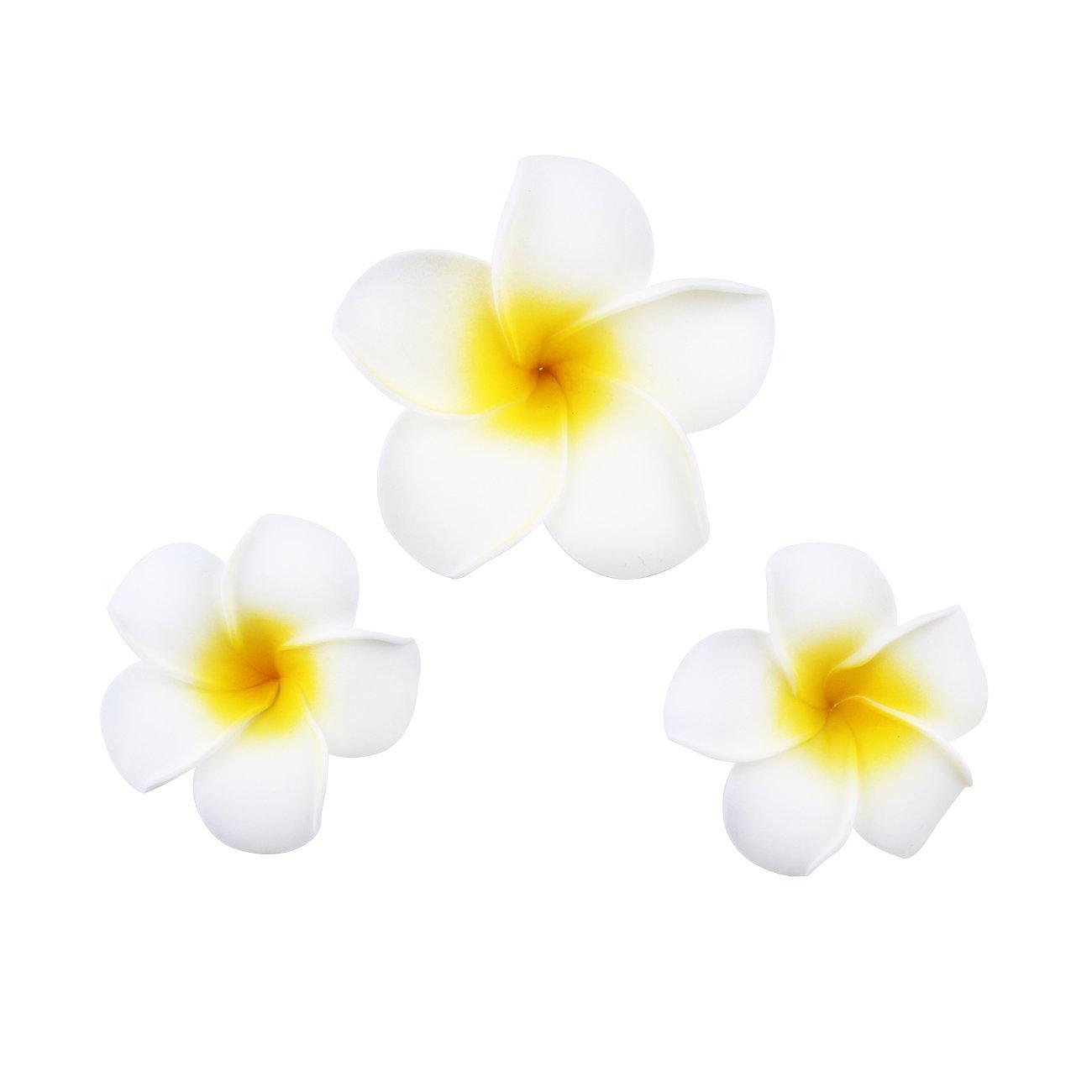 Cheap hawaiian flower plumeria find hawaiian flower plumeria deals get quotations womens fashion 3 pcs hawaiian white plumeria flower foam hair clip balaclavas for beach izmirmasajfo