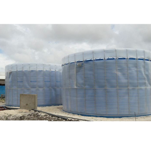 Waste Food Management Biogas Plant Digester