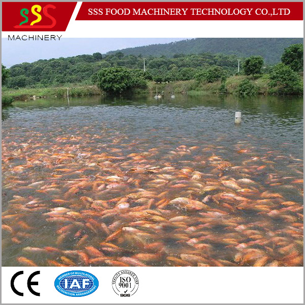 Sell well in the market shrimp fish waste disposal dry powder animal feed making machine