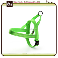 Glow Castle Quick Fit Amazon Nylon Dog Harness