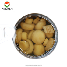 115g Export canned whole mushroom in high quality