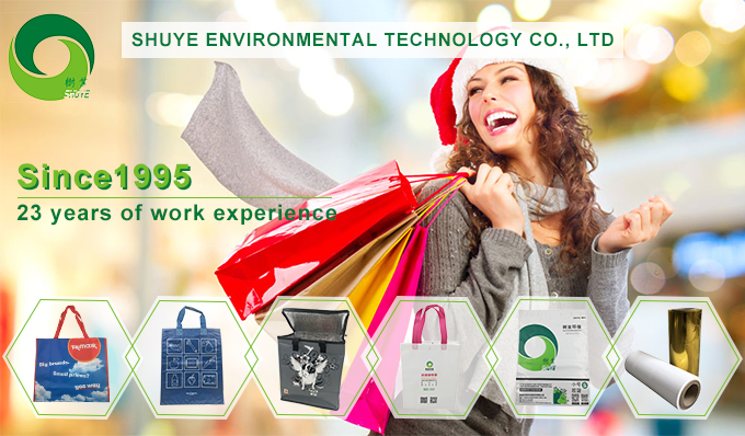 Wholesale Cheap Fashional Custom Color Your Own Logo Design Printed Recycled Luxury Paper Gift Bags