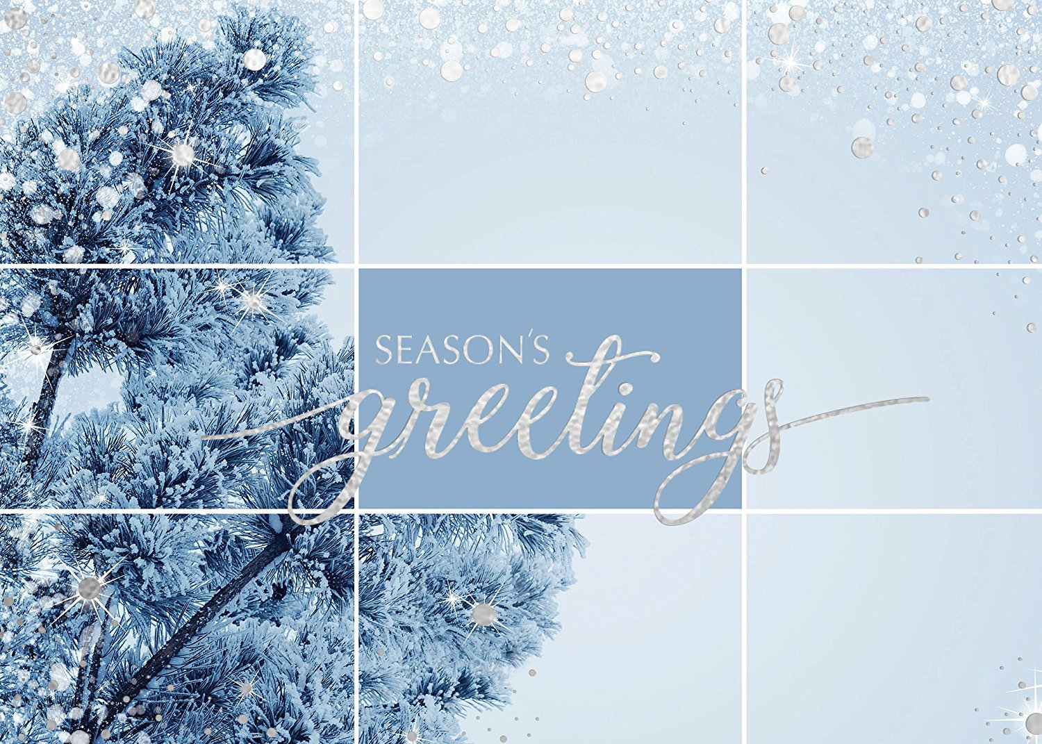 Holiday Foil Printed Greeting Cards - H1703. Greeting Card with Silver Foil Snow Elements and Season's Greetings in Silver Foil. Box Set Has 25 Greeting Cards and 26 Silver Foil Lined Envelopes.