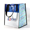Durable Printing Custom Nylon Foldable Shopping Bag