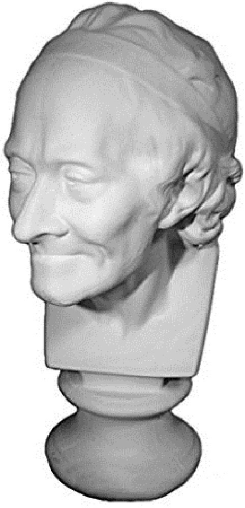 """Torino GES-53 Life Size Bust of Voltaire Plaster Cast Mannequin, Great for Artists, Artistic piece, Color: White, Size: 11"""" X 8"""" X 19"""""""