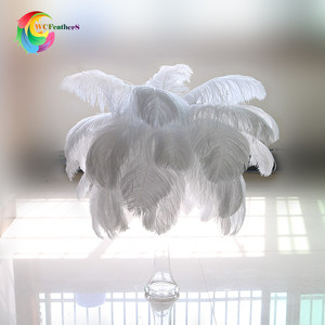 Bulk Ostrich Plumes Feathers White Ostrich Feathers Curly Ostrich Feather Puffs Party Carnival Wedding Decorations