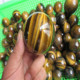 Natural Beautiful small tiger eye crystal ball for decoration wholesale