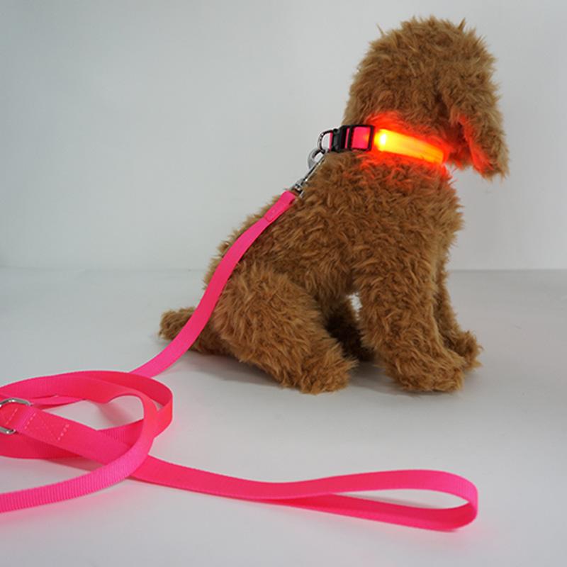 Nylon Webbing LED Dog Collar Night Light Safety Walking Dog Collars