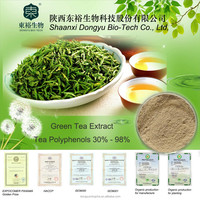 green tea polyphenols capsules green tea powdered extract bio green tea extract for weight loss fat burning