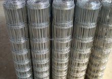 High tensile strength Steel wire plain weave field fence for Pastures 2016 hot sale