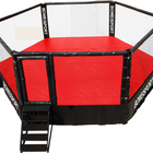 Professional Customised Martil Arts Thai Octagon MMA cage