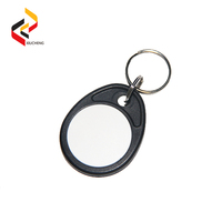 Manufacturer Smart Custom 125KHz RFID Key Tag/Fob Waterproof Cheap for Access control