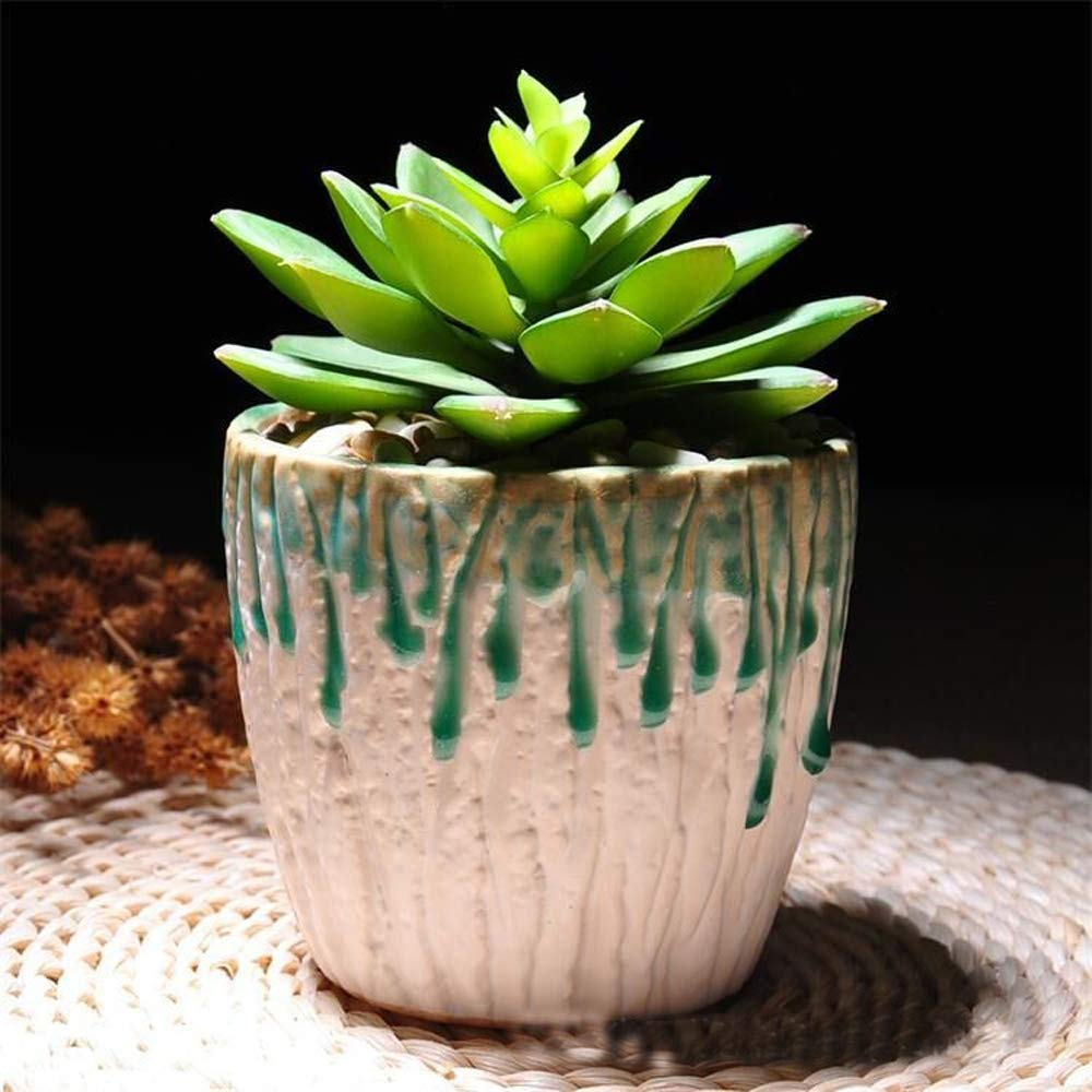Better-Way Orchid Planter Pot Small Modern Decorative Ceramic Flower Plant Pot with Holes Home Office Desk Mini Succulent Cactus Container Indoor Decoration (Green)
