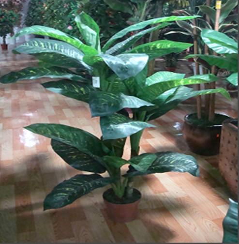 K Decorative Light Stick Plants Outdoor Ornamental Plant Wholesale