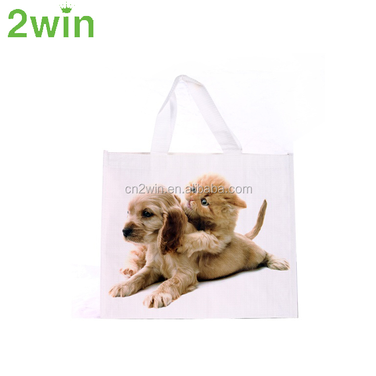 Wenzhou Factory Offer Cheap Advertising PP Woven Bag