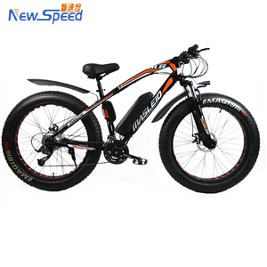 2018 e bike fat tire electric bicycle for lady china electric bikes with 48v 500w