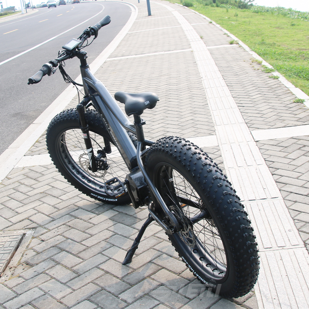 LEILI full suspension 26 inch 48v 1000w mid drive bafang ultra fat tire electric <strong>bike</strong>