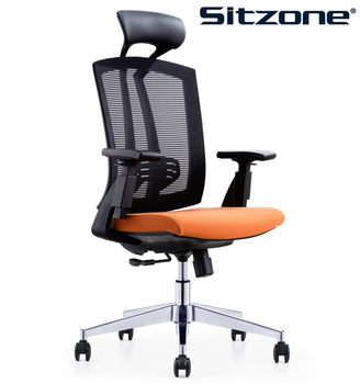 Adjustable Modern High Back Executive Office Mesh Chair CH 163A