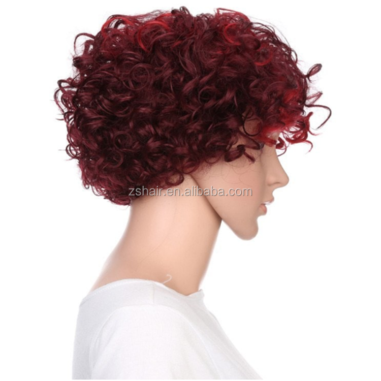 New Fashion Short With Inclined Bang Fluffy Curly Highlighted Synthetic Wig Hair For Women