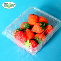 250G PET Disposable Blister Plastic Fruit Clamshell Packaging Box