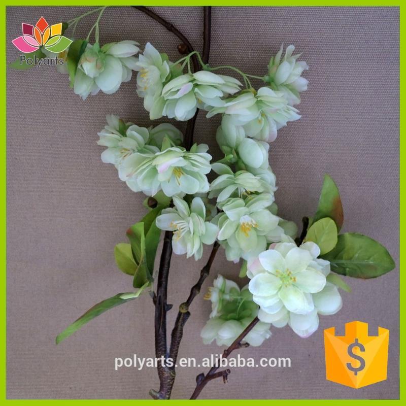 https://sc01.alicdn.com/kf/HTB19.QkOVXXXXamXXXXq6xXFXXXW/White-cherry-blossom-flower-branch-with-weeping.jpg