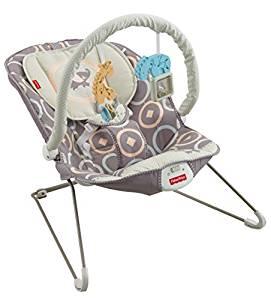 Fisher-Price Baby Bouncer, Luminosity by Fisher-Price