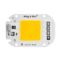 Driverless COB Led Chip 20W 30W 50W 110V 220V AC Cob Led Chip With Nature Color