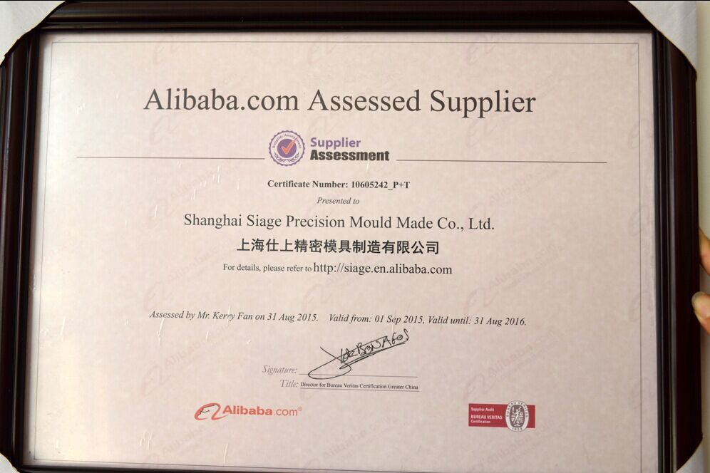 China Plastic Injection Molding Service