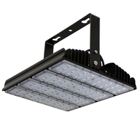 TNL250-110PAL-G professional project 27500 lumens outdoor 250w warehouse led tunnel light