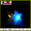 holidays decoration lamp/led star lamp for Christmas