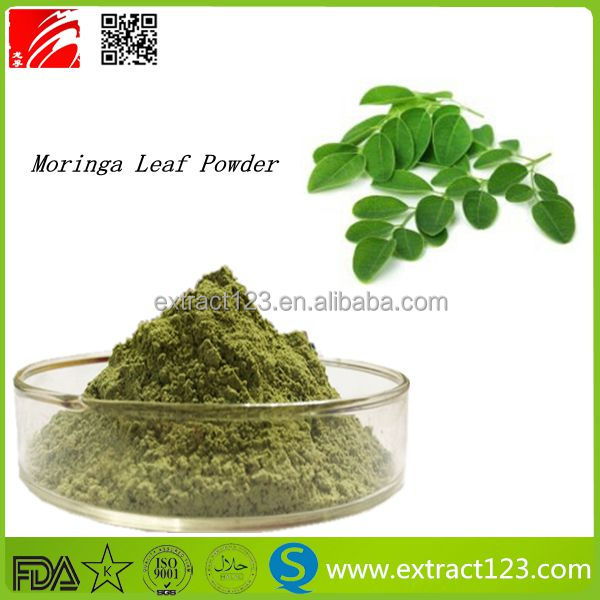 2016 Hot Selling 100% Natural organic moringa powder,moringa leaves for sale