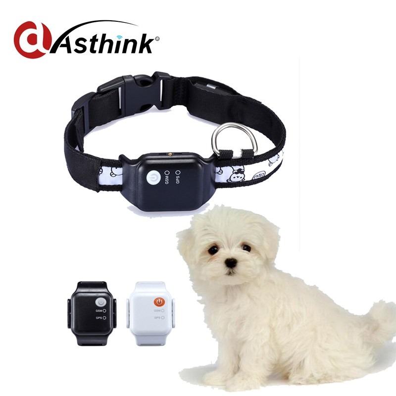 Top Quality GPS Tracking dogs 3g gps tracker for sale with factory price