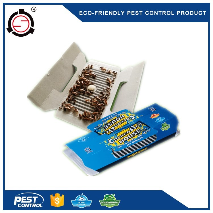 Easy Catching Non Poisonous Cockroach Killer Glue Trap