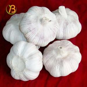 2016 crop china garlic price per ton 1 kg garlic price oman 1000 grams garlic