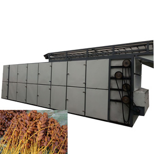 China Tunnel Fruit Dehydrator/Mesh Belt Dryer drying machine for cotton