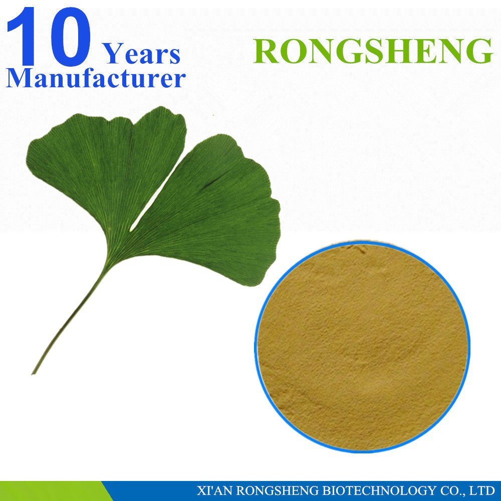 High Quality Natural Ginkgo Biloba Extract 24/6