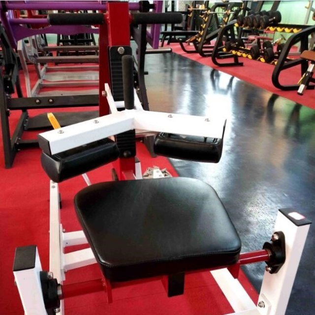Fitness machine, Gym Fitness Equipment ,Commercial fitness equipment /LS-H22  Seated Calf Raise