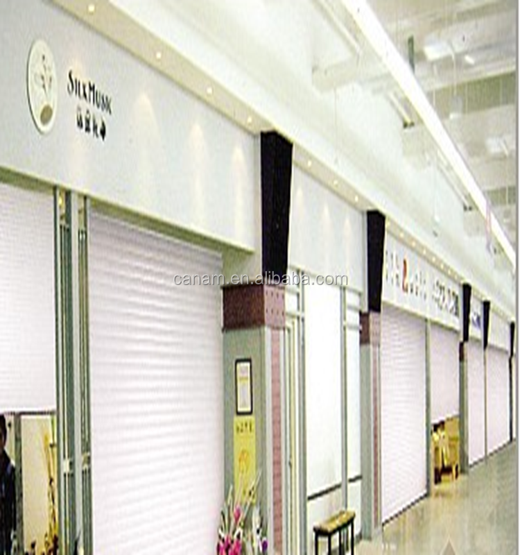 electric upward sliding single/double garage door