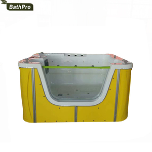 Freestanding Massage Function Swimming Pool Baby Spa Equipment Bathtub