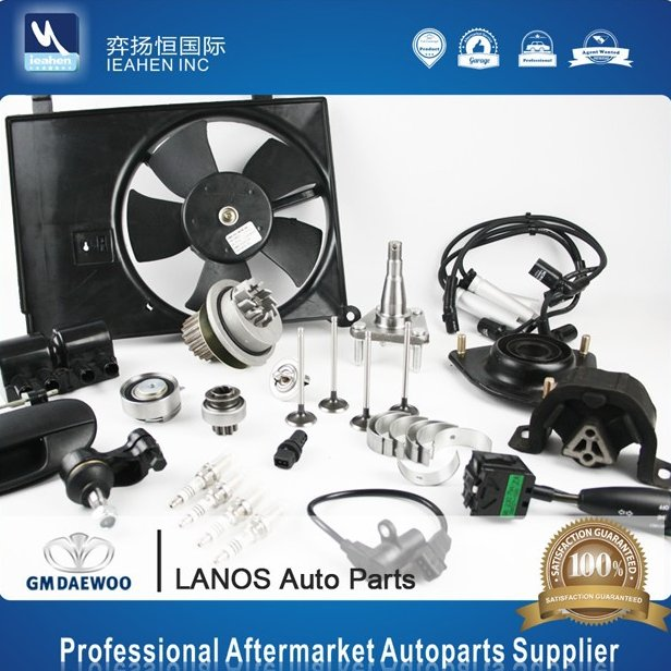 China Supplier Korean Car Daewoo Lanos Auto Spare Parts