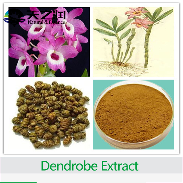 Chinese traditional herbal medecine Dendrobium nobile extract Ration 5:1 10:1 20:1