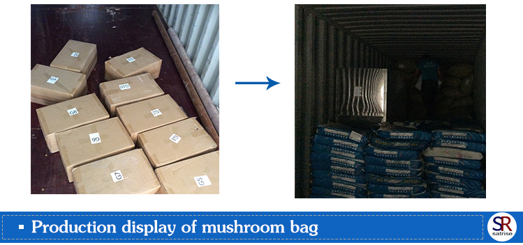 Wholesale cultivating fresh substrate growing bags oyster mushroom