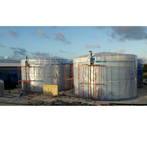 Big Bio Gas Making Biogas Plant and System