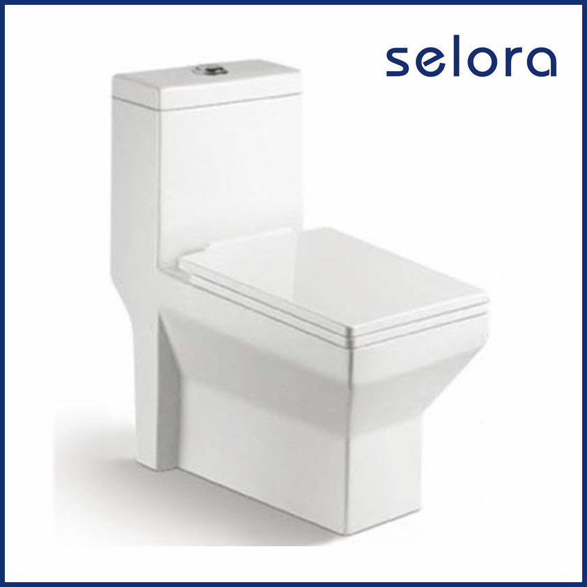 most popular wholesale luxury design dual flush seat toilet with square shape