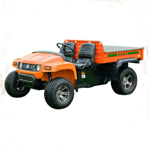 High Quality Ce Certificated 5kw AC motor transportation UTV vehicle