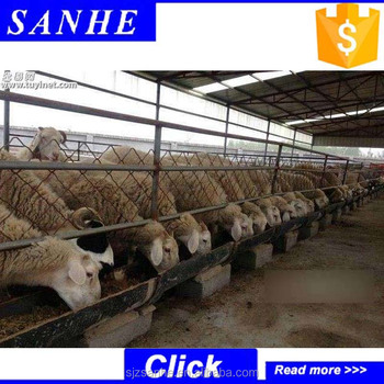 Low Cost Livestock Panels Goat Farm House Dairy Shed Hot Sale